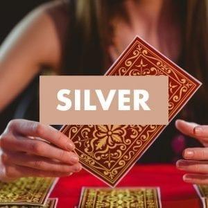 μελλοντικές προβλέψεις silver